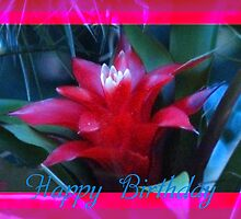 Happy Birthday flower for you by TLCGraphics