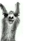 Llama by KittenFlower