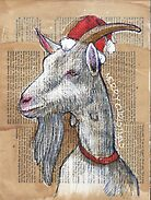 Christmas Goat by Michele Meister