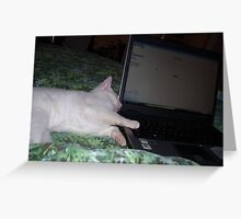 Myspace Cat Greeting Card