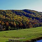 Country View by Robin D. Overacre