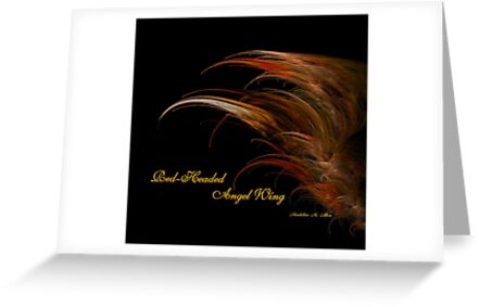 Red-Headed Angel Wing by Madeline M  Allen