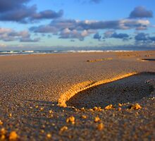 Footsteps in the Sand by janrique