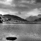 Blea Tarn by Anna Ridley