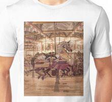 Shining armour  Unisex T-Shirt