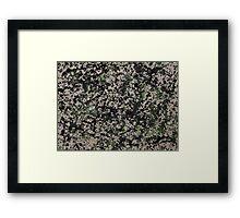 Lorne Splatter #5 Framed Print
