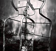 Gemini by Trish Mistric