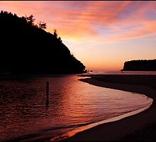 Whangamata Dawn by EssjayNZ