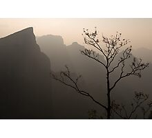 Tree silhouette against mountan landscape art photo print Photographic Print