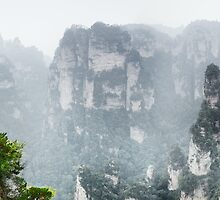 Tree on a cliff at Zhangjiajie National Forest Park art photo print by ArtNudePhotos