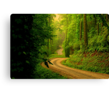 Low Gap Road  Canvas Print