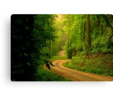 Low Gap Road  Canvas Print