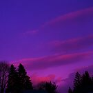 Evening Sky First Day of Spring! by RLHall