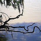 Calm Waters by Rebekah  McLeod