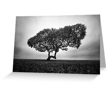 Napier Beach - Tree Greeting Card