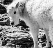 Mountain Goat Kid Sticker