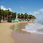 Beach Green House by PiccirilloArt