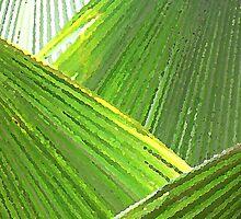 Close Palms by PiccirilloArt