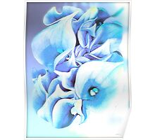 Calla Lily Soft Lilac and Blue Poster