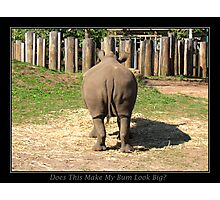 Does This Make My Bum Look Big Photographic Print