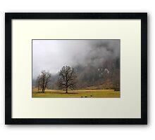 Winter in green Framed Print