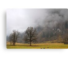 Winter in green Canvas Print