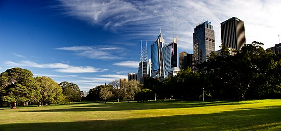 Sydney Skyline From Royal Botanical Garden by MiImages