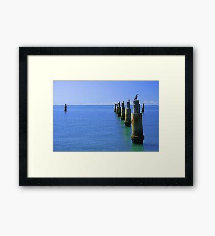 The Roosts - Moreton Bay Framed Print