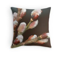 Pussy Willow Spring Throw Pillow