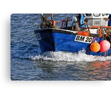 Slippery Dick 2 ~ Lyme Regis Canvas Print