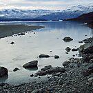 Glacial morraine, Argentina by Elaine Stevenson