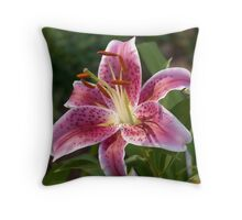 Evening Star Gazer Throw Pillow