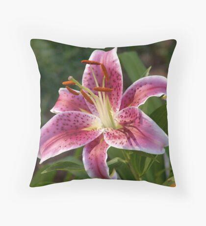 Evening Star Gazer Throw Pillow