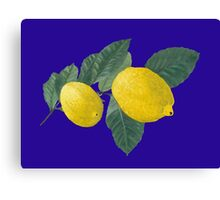 Two lemons on a branch with leaves. Canvas Print