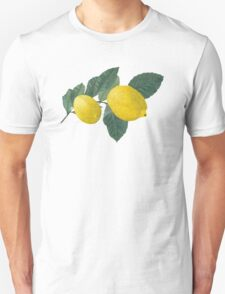 Two lemons on a branch with leaves. Unisex T-Shirt