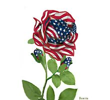 .♥➷♥•* Stars & Stripes Rose For 9-11 In Rememberance.♥➷♥•*¨ Photographic Print