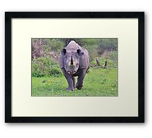 Black Rhino Bull - Powerful Me Framed Print