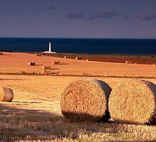 Barns Ness Lighthouse by Douglas Robertson