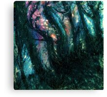 Equinox Forest  Canvas Print