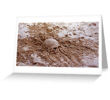 Don't Bury Your Head Greeting Card