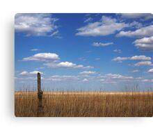 The Single Cedar Fencepost Canvas Print