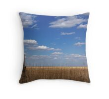 The Single Cedar Fencepost Throw Pillow
