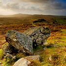Dawn from Chinkwell Tor, Dartmoor, England by DualAspect