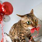 Helium Addict by Flibble