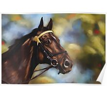 Show Horse Poster
