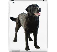 Black Labrador retriever iPad Case/Skin