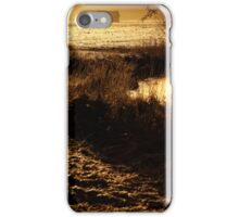 24.2.2014: One Spring Morning iPhone Case/Skin