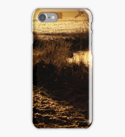 24.2.2014: One Spring Morning iPhone Case/Skin