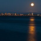 Moon over Water by DavidsArt