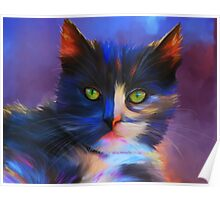 Meesha Colourful Cat Painting Poster